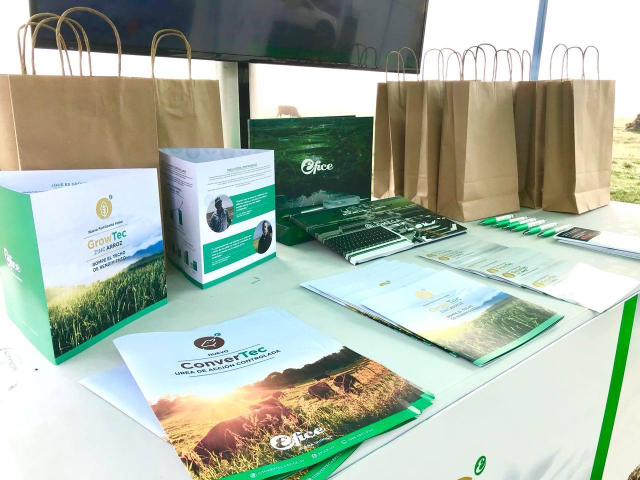 Efice presente en inauguración de la cosecha de arroz 2018