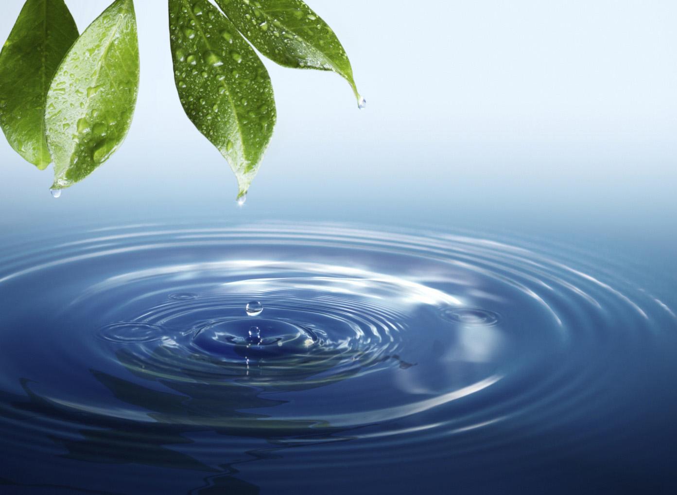 EFICE es socio fundador del Centro Tecnológico de Aguas (CTA)
