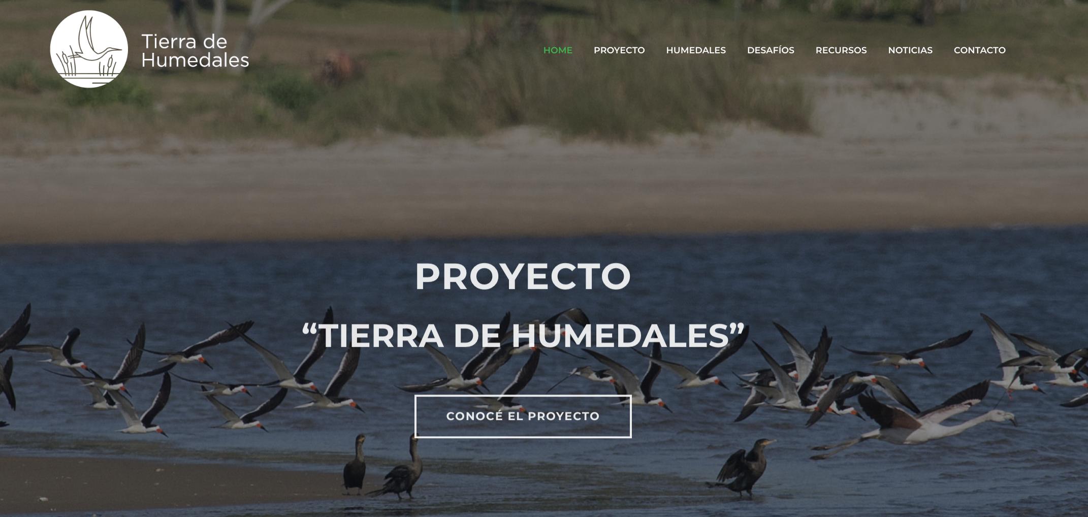 Lanzamiento del sitio web de Tierra de Humedales